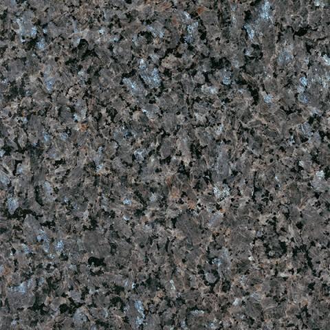 Labrador Blue Pearl TFV